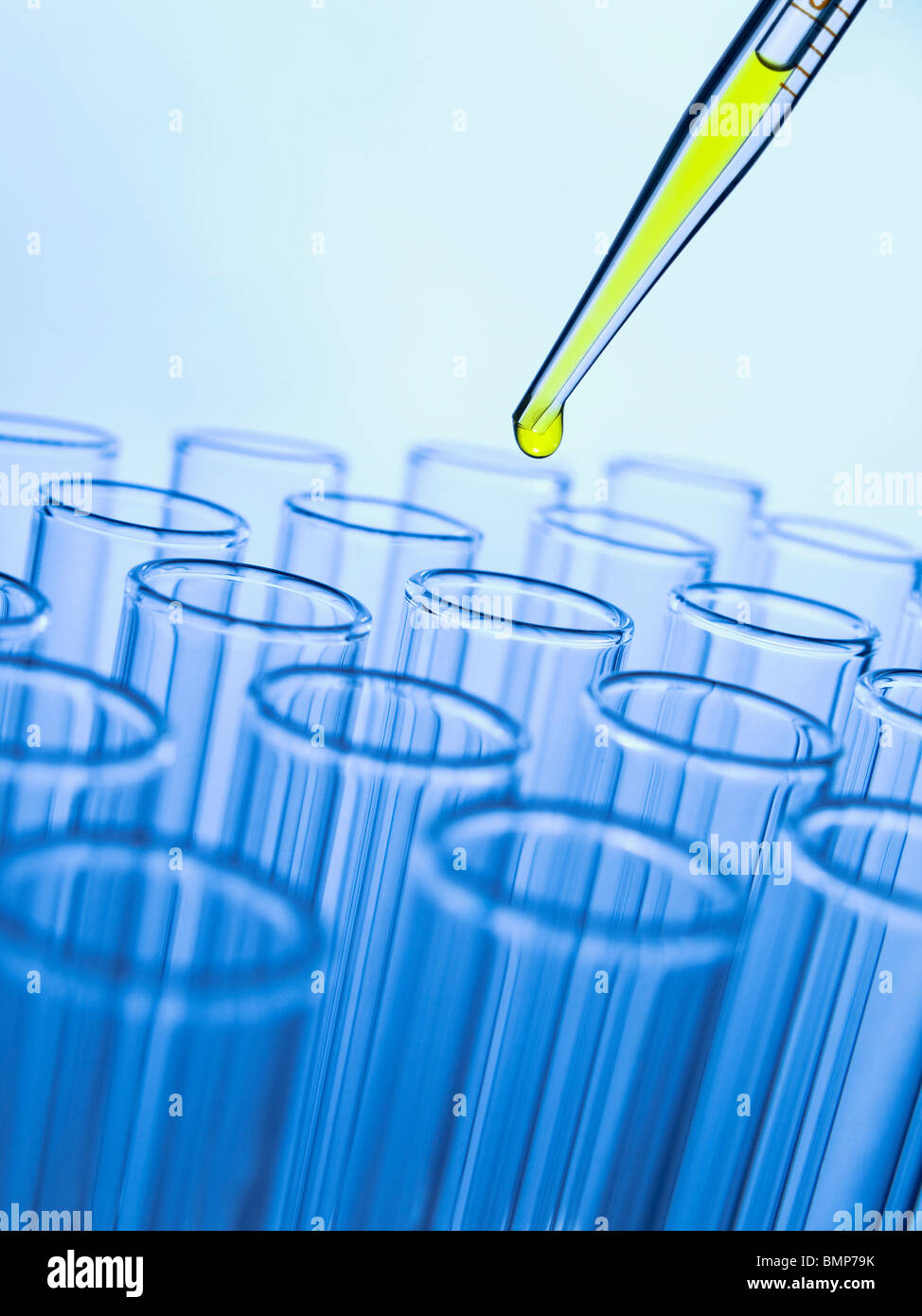 Close up of a pipette dropping a yellow sample into a test tube. - Stock Image