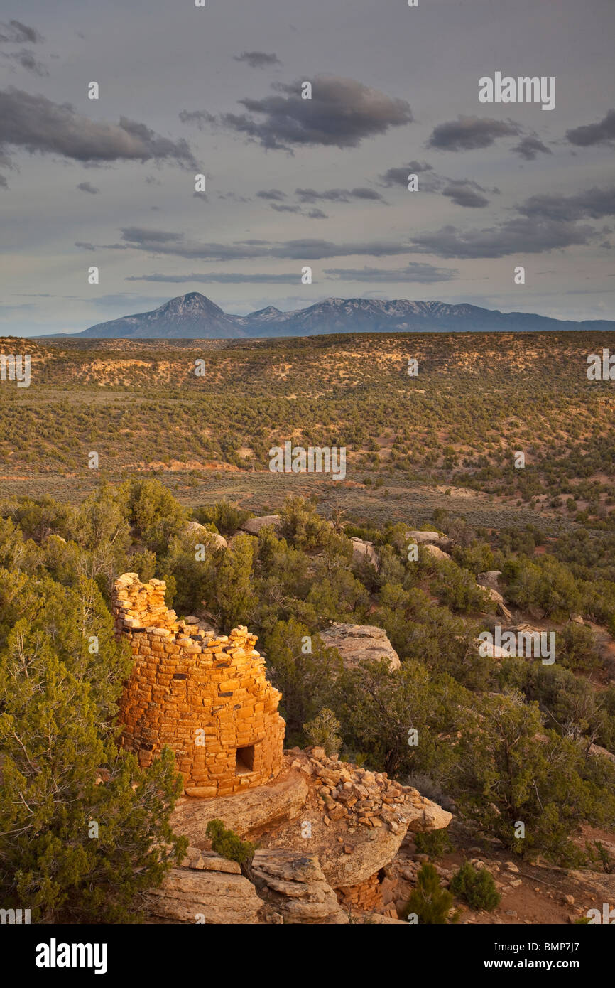 Ancient tower at Painted Hand Pueblo, Canyons of the Ancients National Monument, Sleeping Ute Mountain in back, Stock Photo