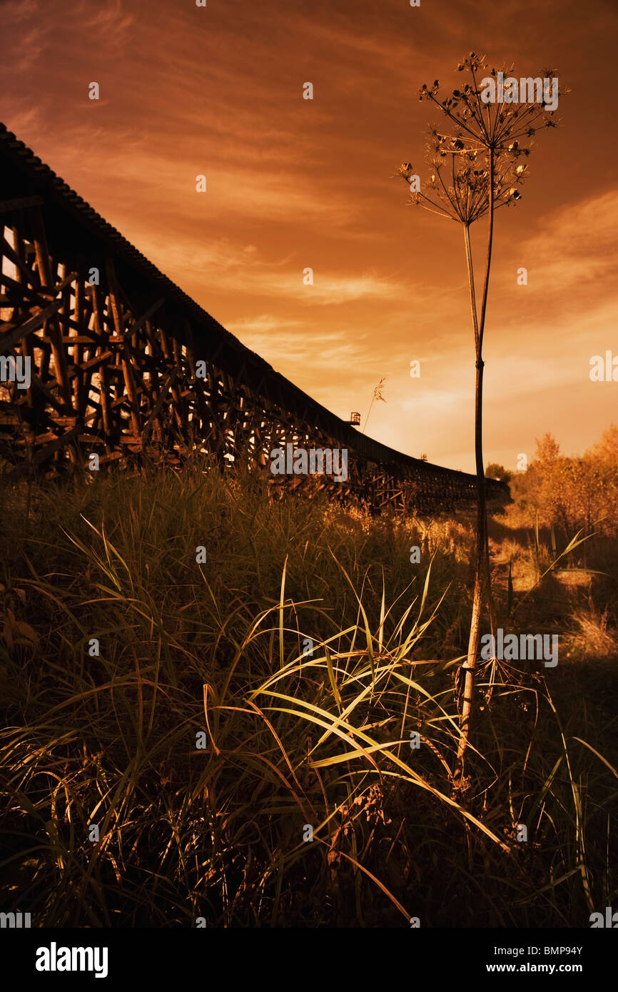 Alberta, Canada; A Train Trestle In A Sunset - Stock Image