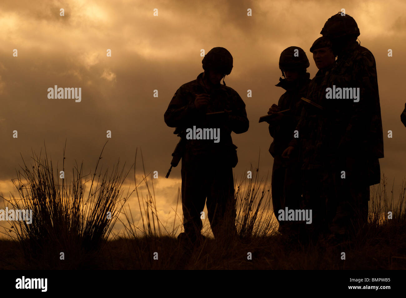 Territorial Army - Stock Image