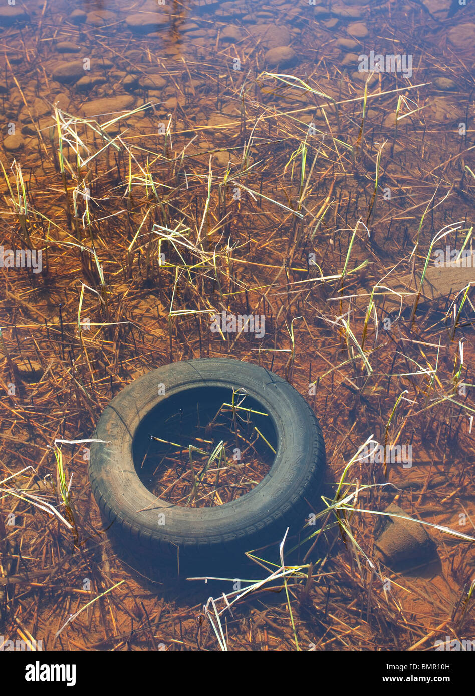 Used car tyre at the bottom of a lake - Stock Image