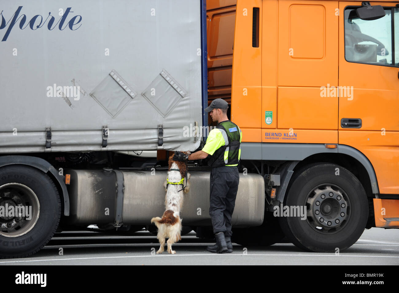 Calais France security officer checking lorries with sniffer dog - Stock Image