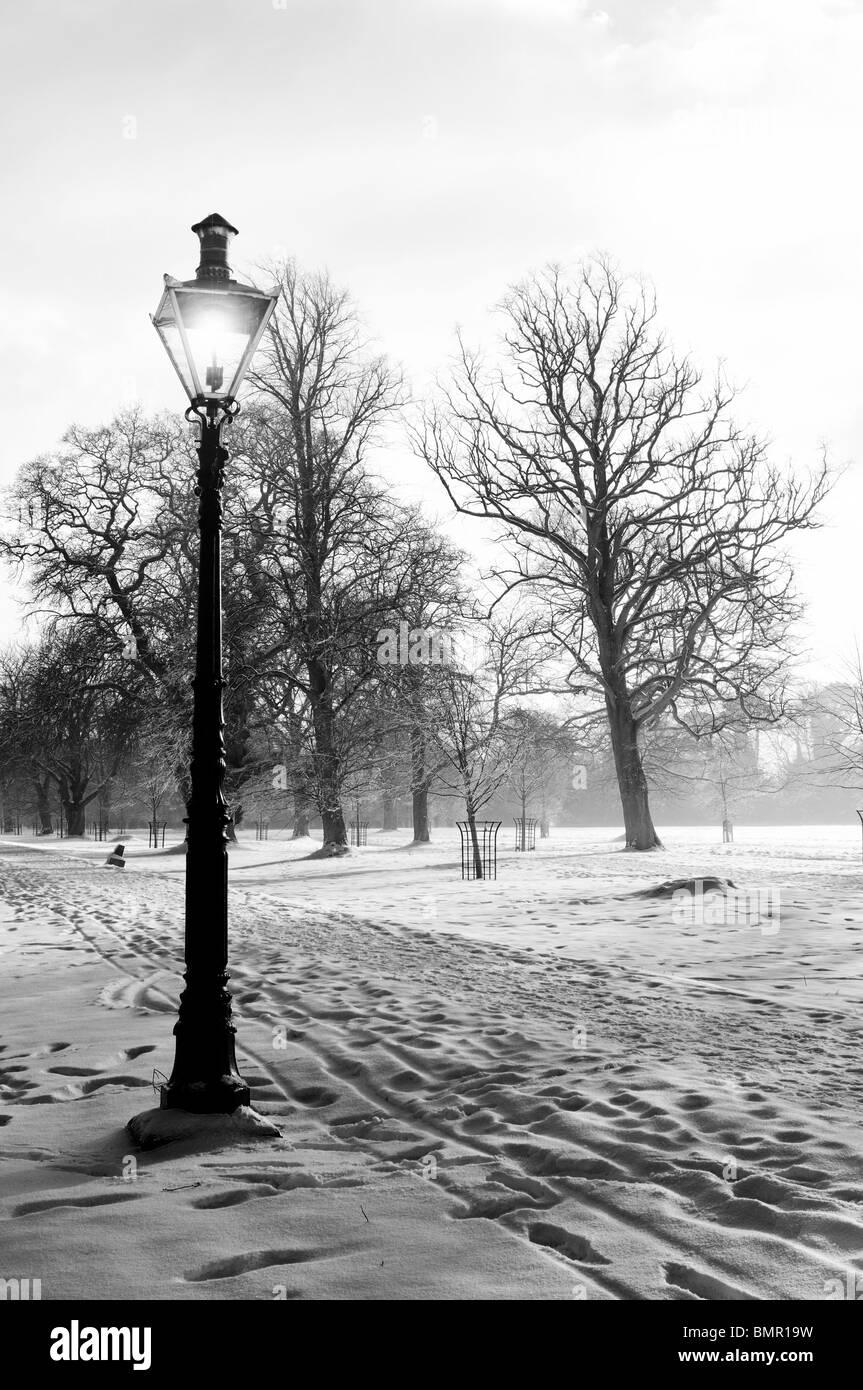 Phoenix Park Dublin Ireland Avenue path walkway trail tree snow snowfall winter christmas scene scenic black and - Stock Image