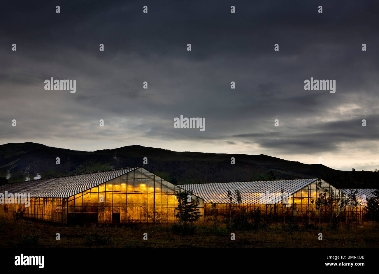 The people in Hveragerði Iceland use geothermal energy  for heating their greenhouses. - Stock Image