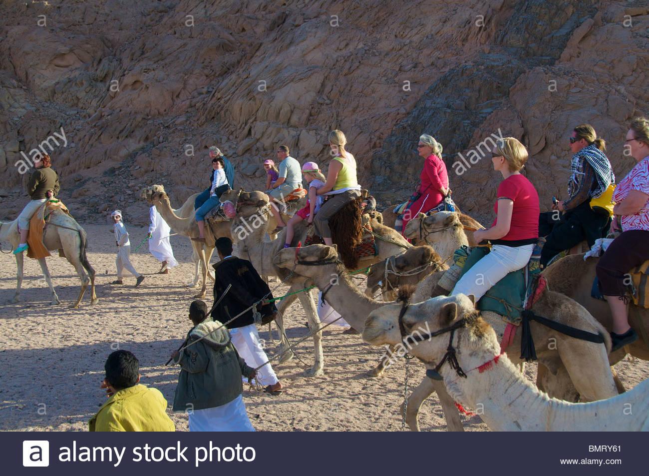Desert Excursion Sharm el Sheikh Egypt - Stock Image