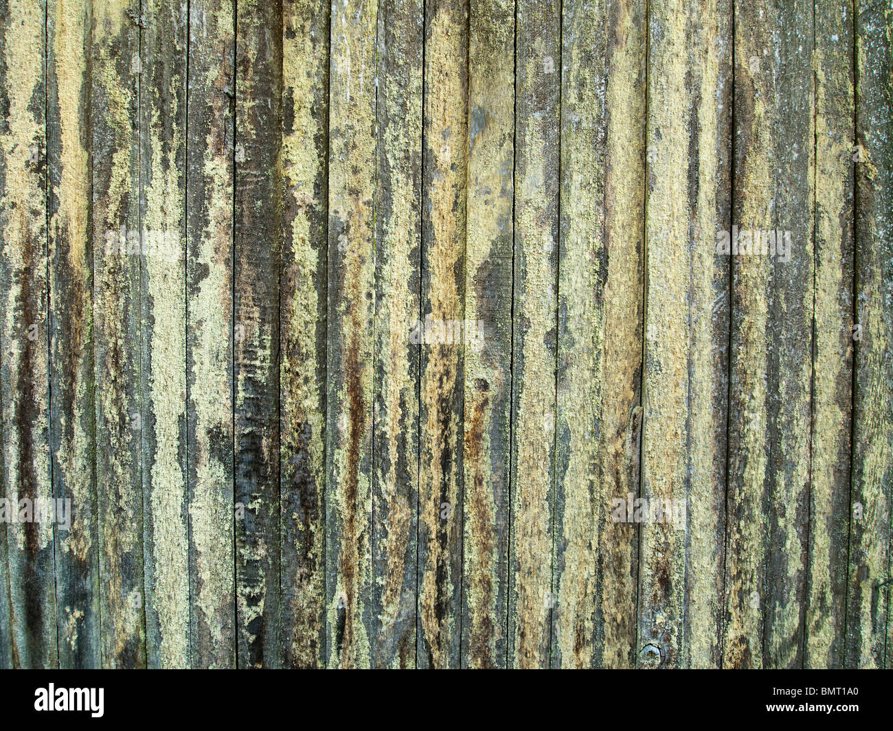 Wood Fence With Lichen - Stock Image
