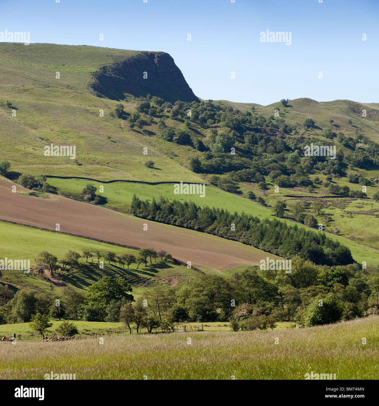 UK, England, Derbyshire, Vale of Edale, Nether Booth, farmland below Back Tor - Stock Image