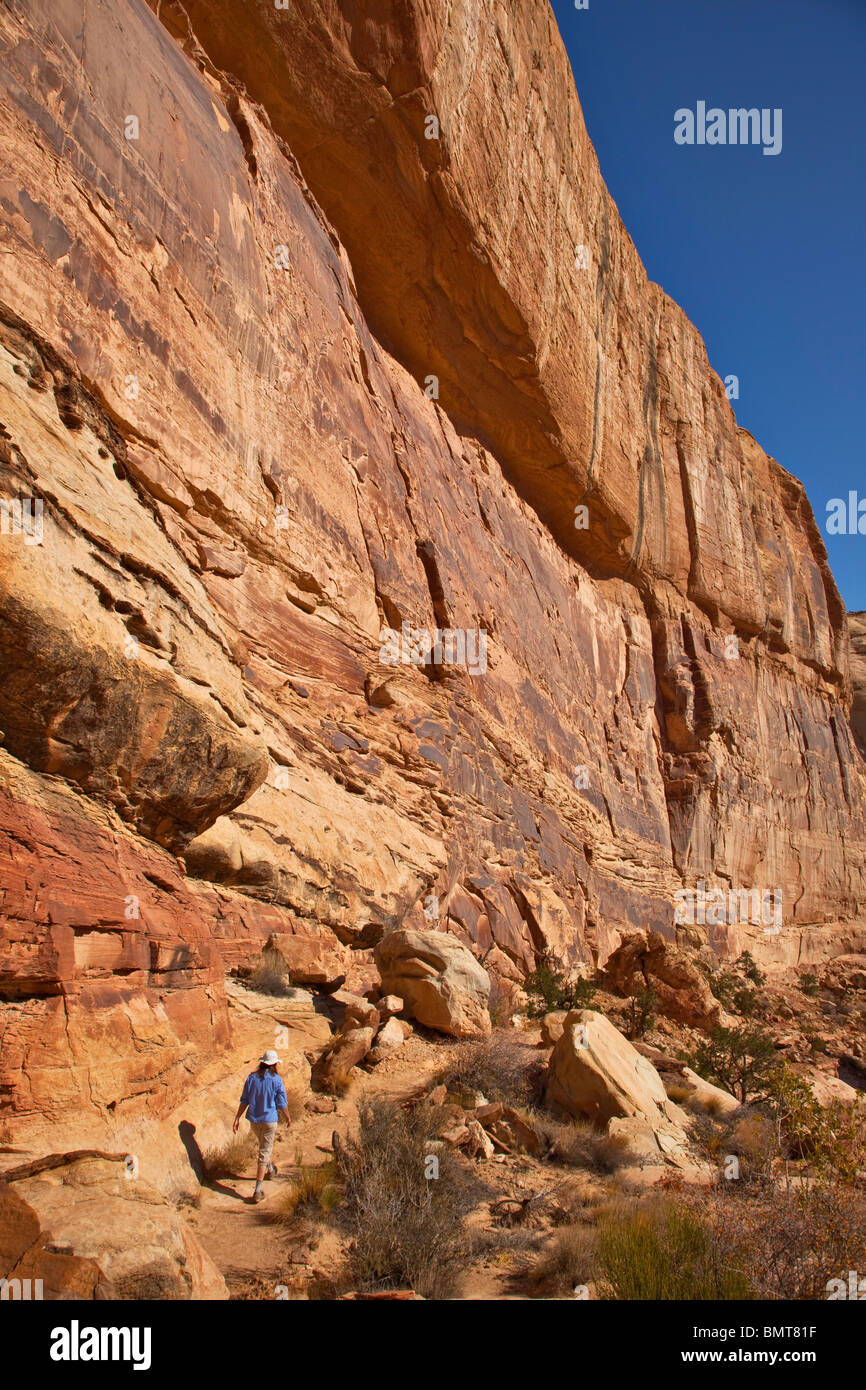 HIker on Golden Throne Trail in Capitol Reef National Park, Utah, USA - Stock Image