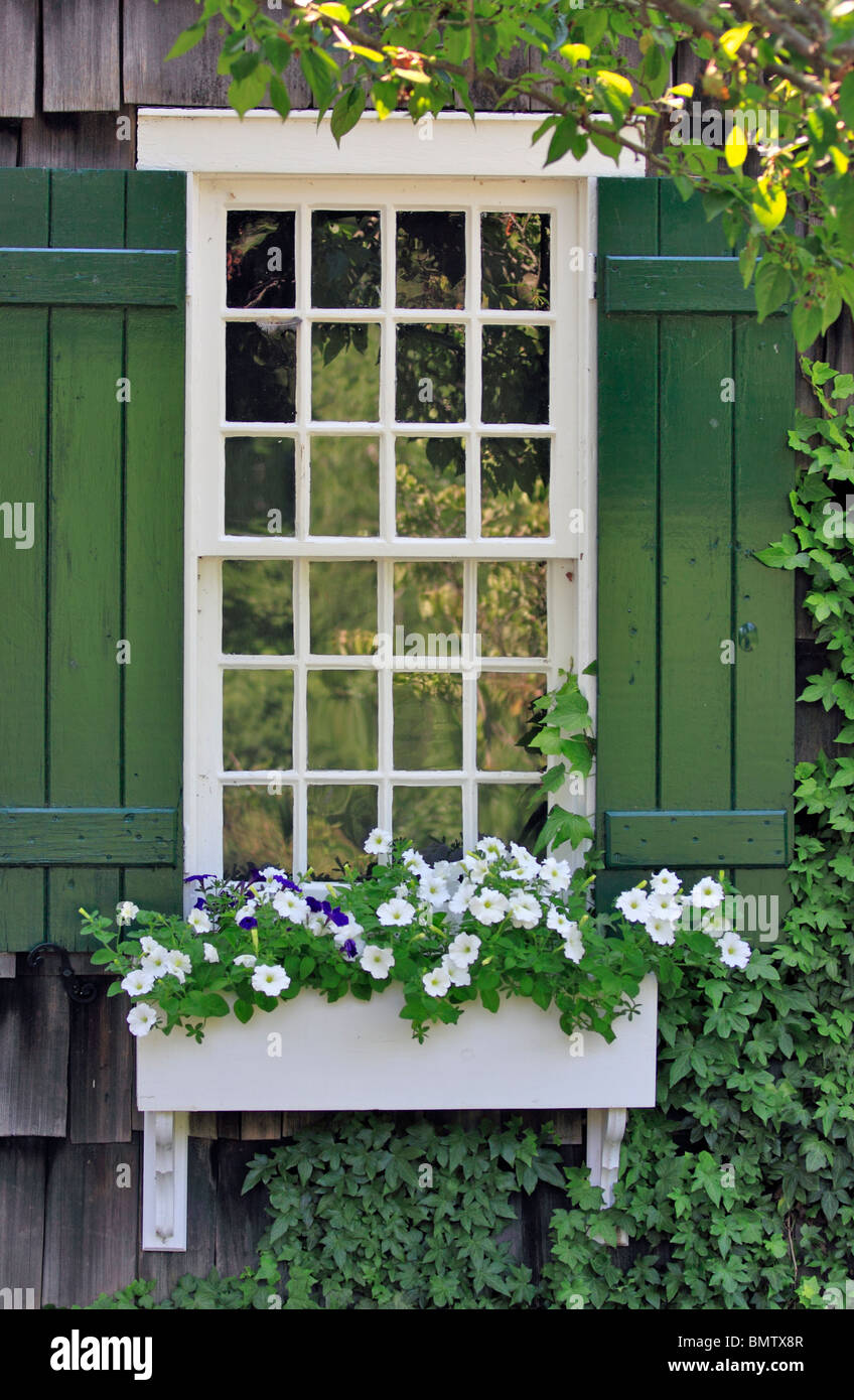 Window and flower box Long Island NY - Stock Image