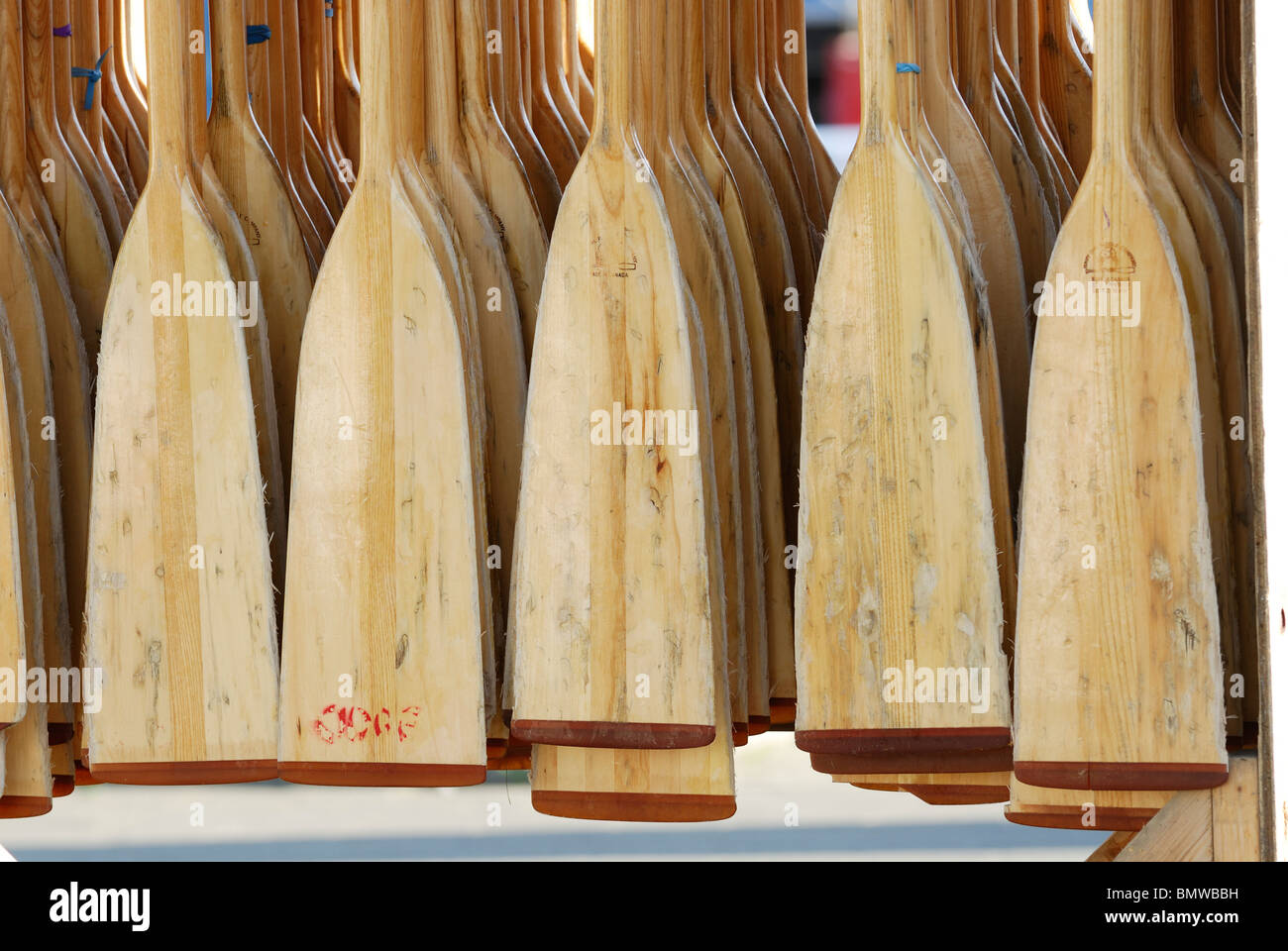 Dozens of wooden paddles hang from a rack waiting to be used in the annual Dragon Boat festival in the City of Vancouver - Stock Image