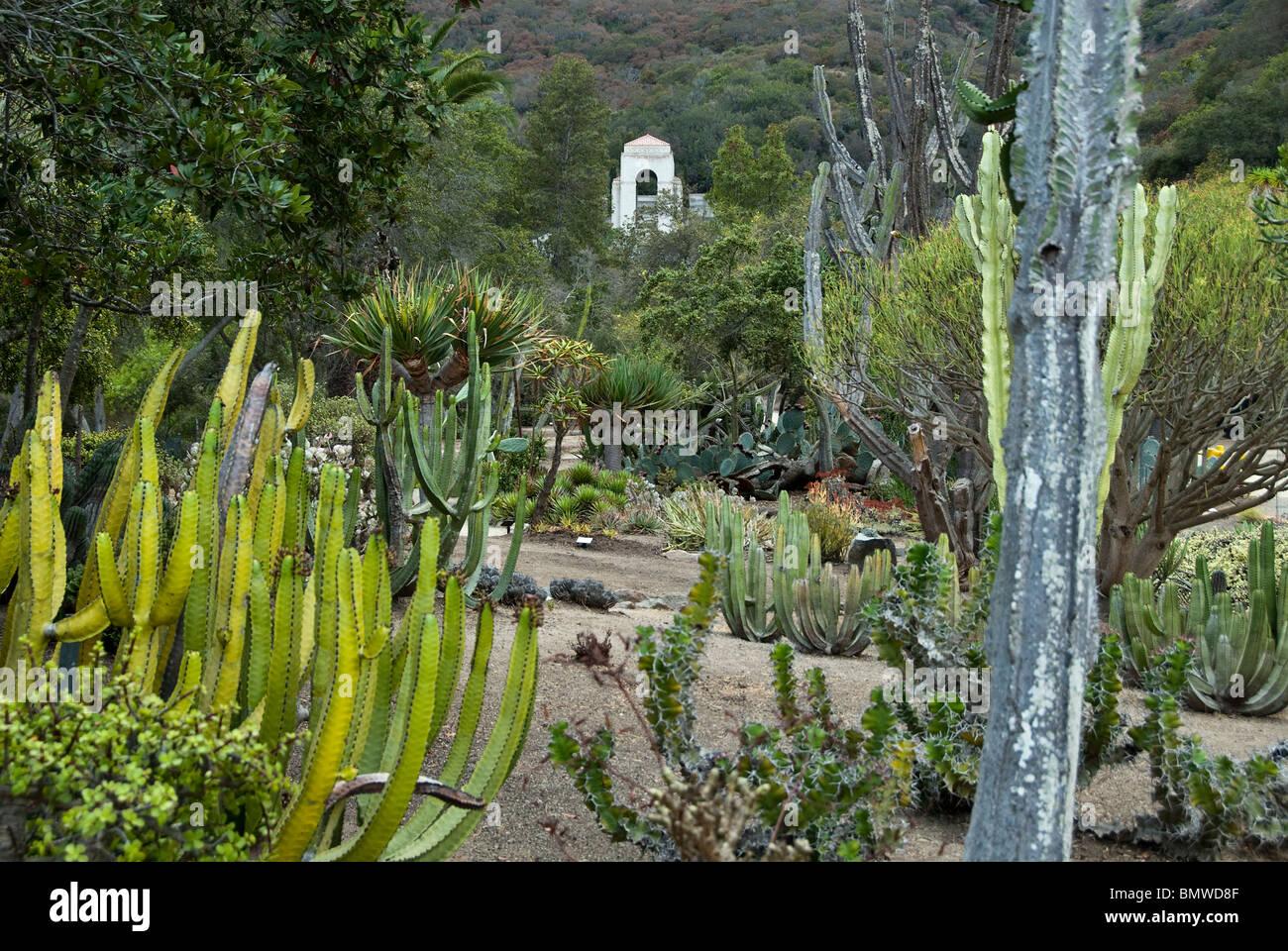 wrigley memorial and botanical gardens catalina island california