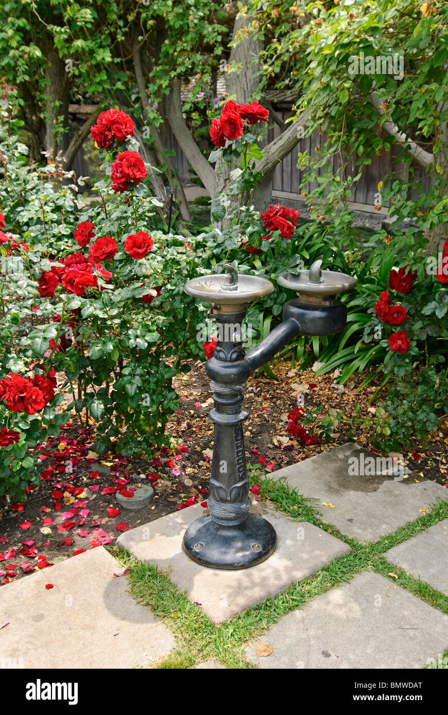 A Decorative Drinking Fountain In The Rose Garden At The Huntington Stock Photo Alamy