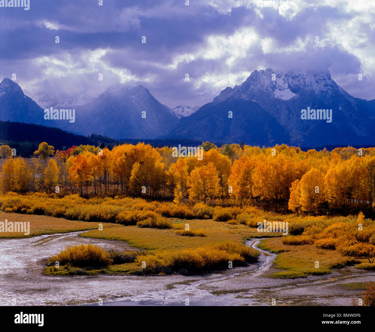 Grand Teton National Park, WY The sun's rays illuminates an aspen grove at Oxbow Bend with storm clouds over - Stock Image