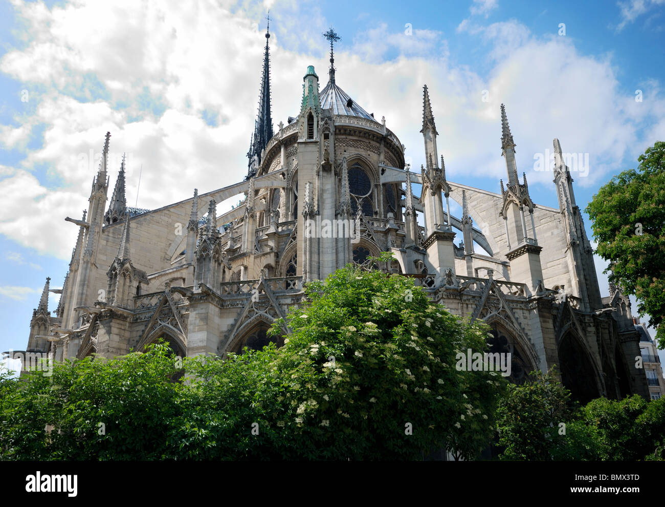 Notre Dame Cathedral view from backyard - Stock Image