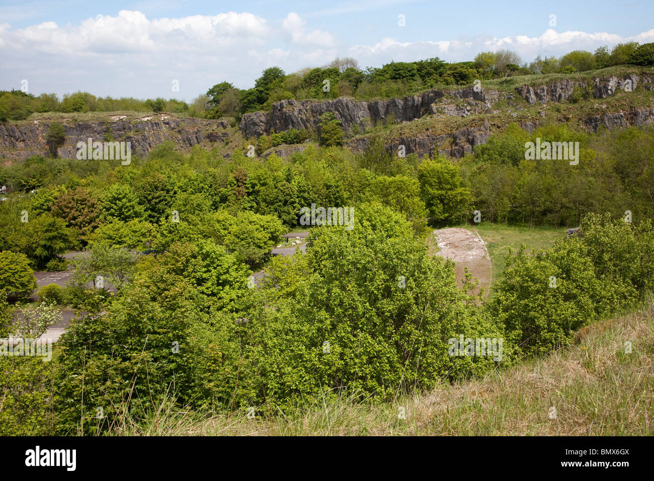 Disused and overgrown quarry in Buxton Country Park Buxton Derbyshire UK - Stock Image