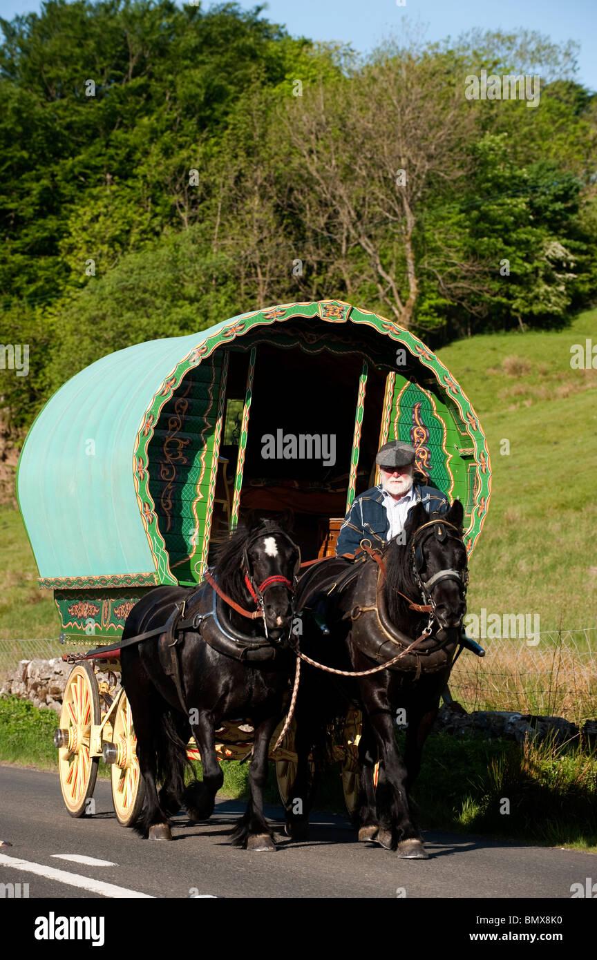 Horse drawn Gypsy caravan on road to Appleby Fair, near Ravenstonedale, Cumbria - Stock Image