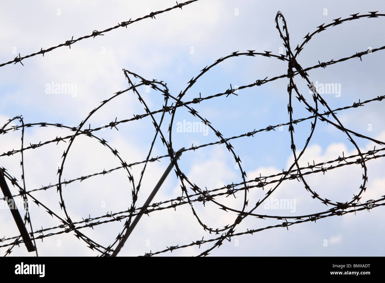 Coiled barbed wire against a cloudy blue sky. - Stock Image