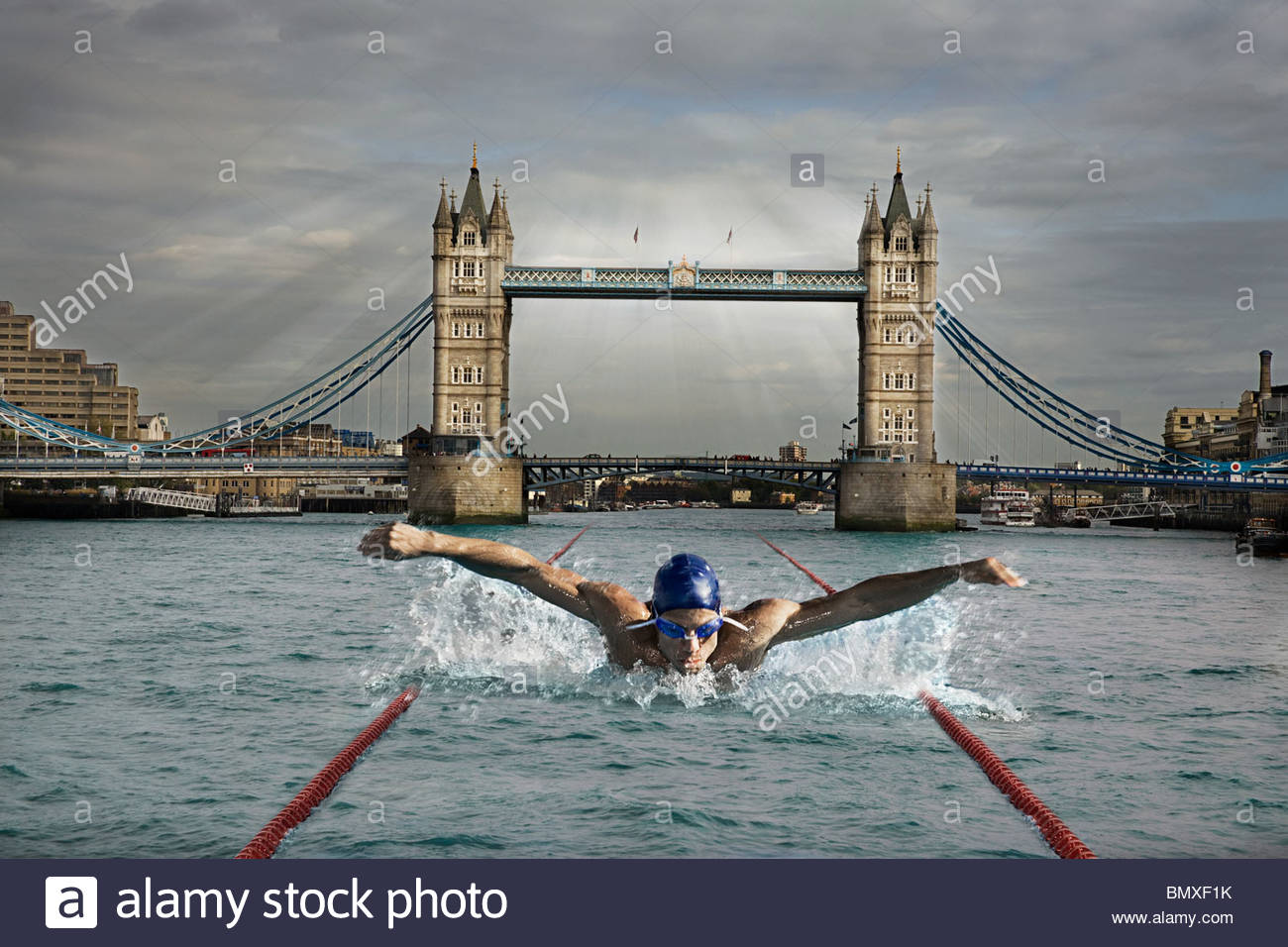 Swimmer in the river thames - Stock Image