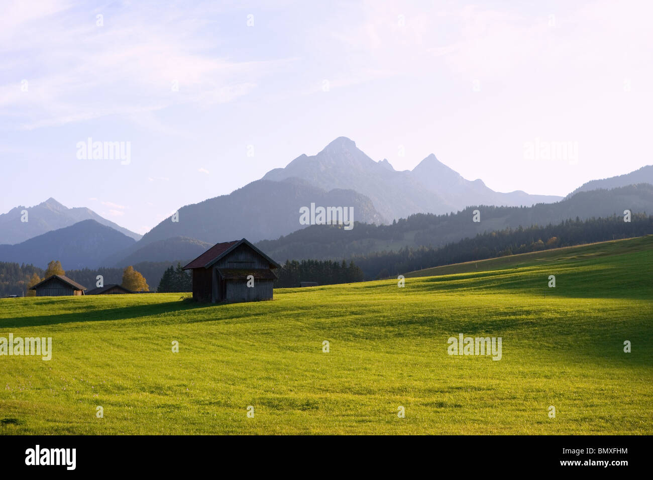 Meadow and karwendel mountains in bavaria - Stock Image