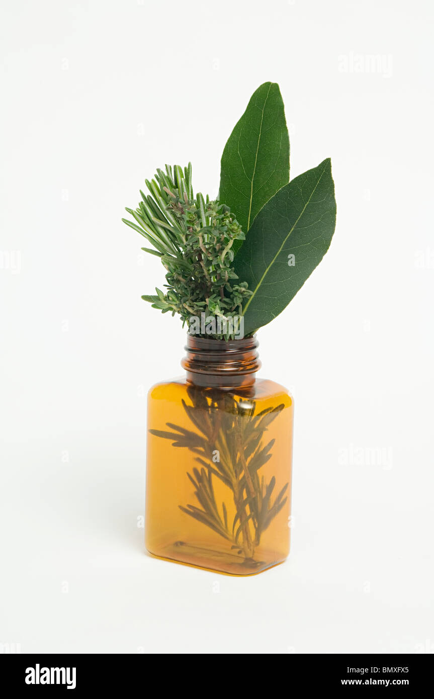 Herbs in medicine bottle - Stock Image