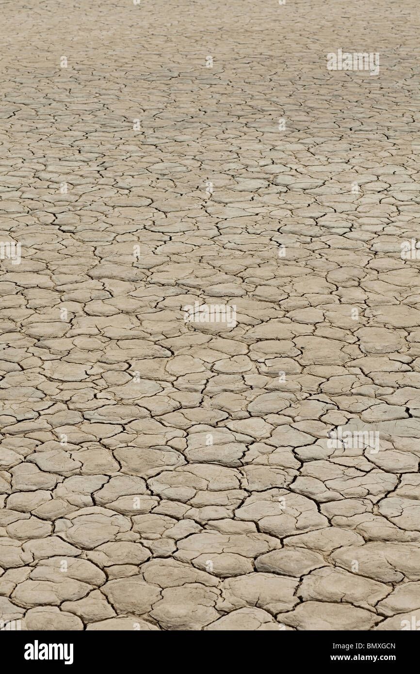 Cracked surface of dry lake bed - Stock Image