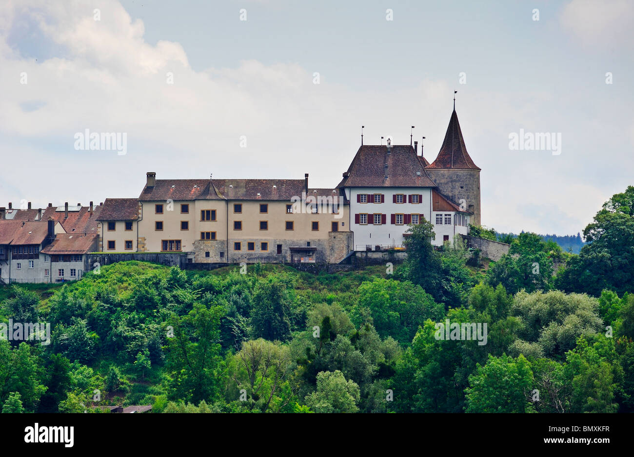 The chateau at Erlach, canton Bern, Switzerland, as seen from the Lac de Bienne (Bielersee) - Stock Image