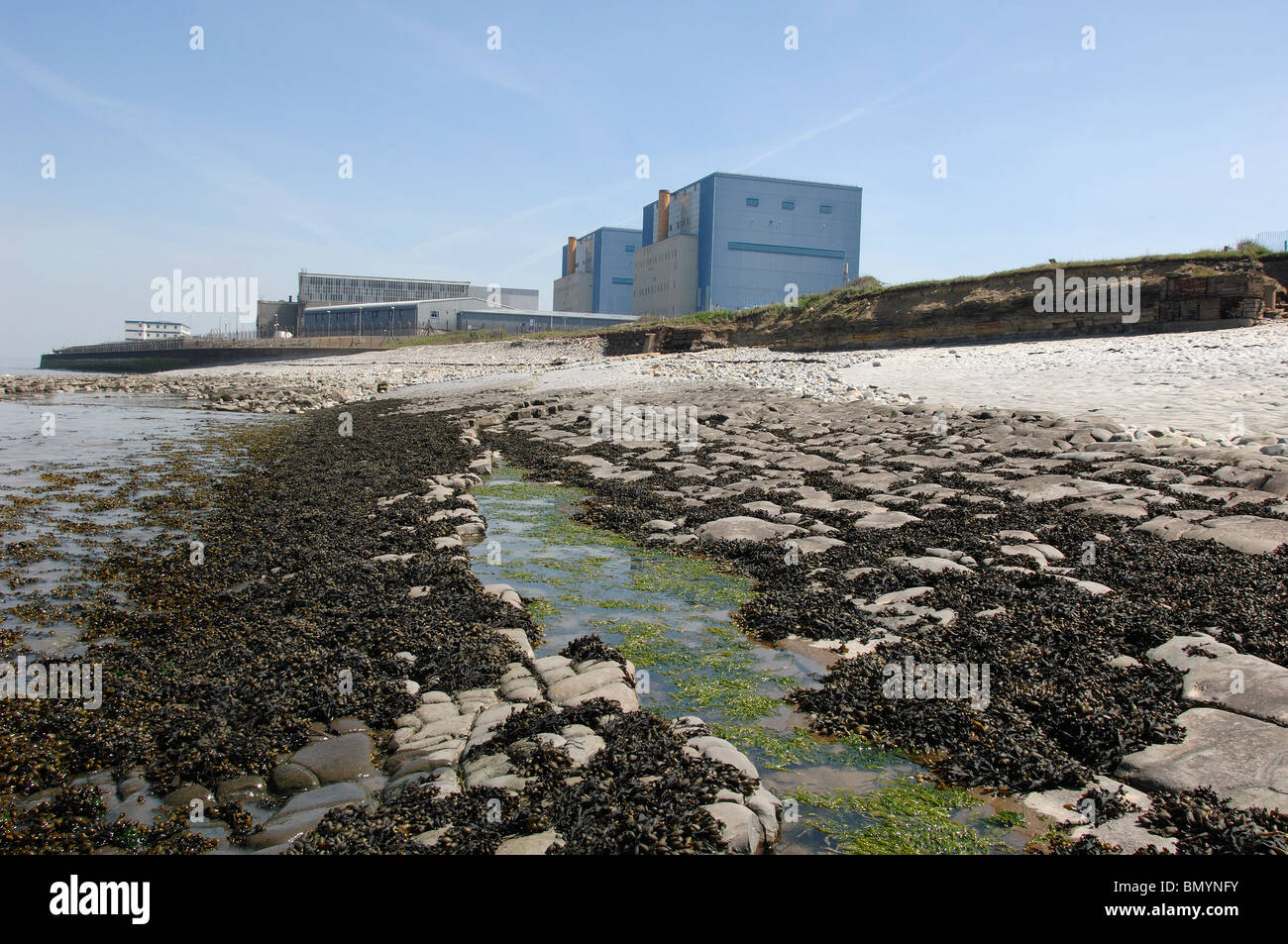 Beach where Proposed Hinkley C Nuclear Power station would be built with Existing Nuclear Stations behind - Stock Image