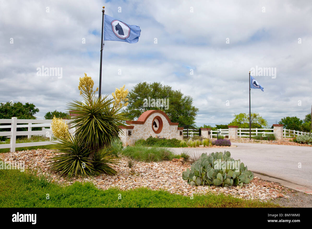 A ranch entrance gate with flag blooming yucca plants near Llano, Texas, USA. - Stock Image