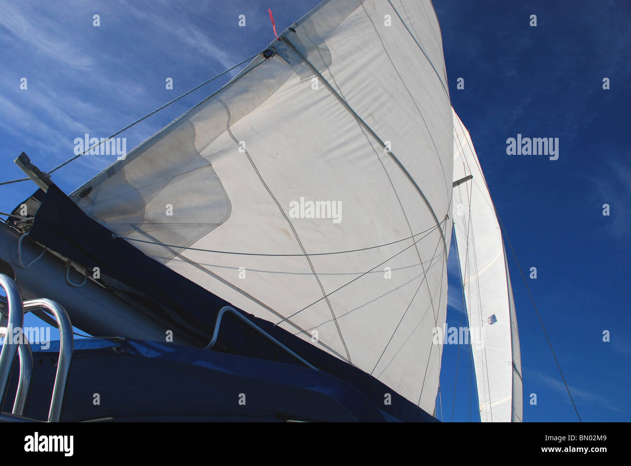 Mainsail in the Wind, Gulf of Mexico, Florida - Stock Image