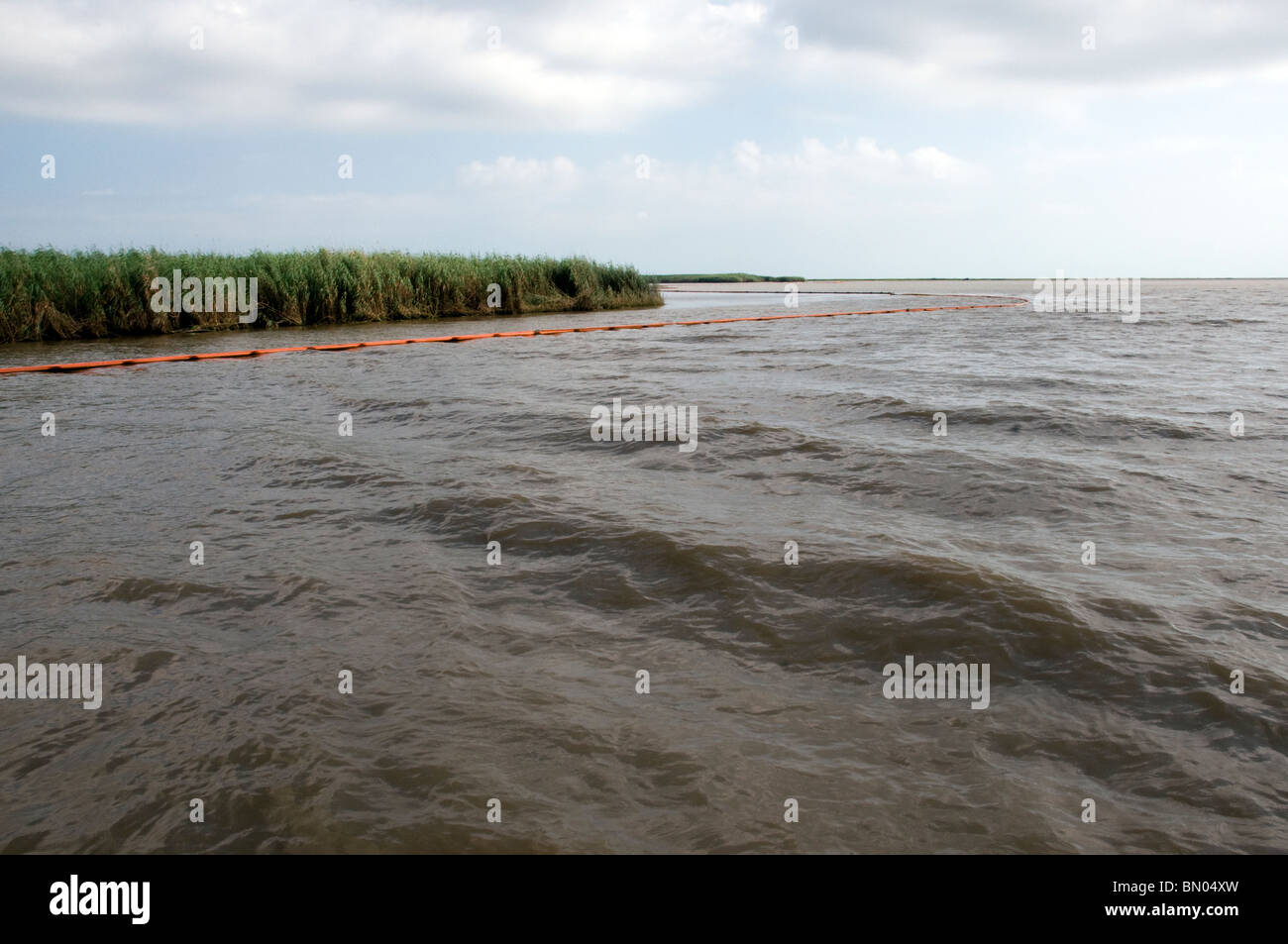 Protective boom surrounding marshes in Barataria Bay, LA, during BP oil spill - Stock Image