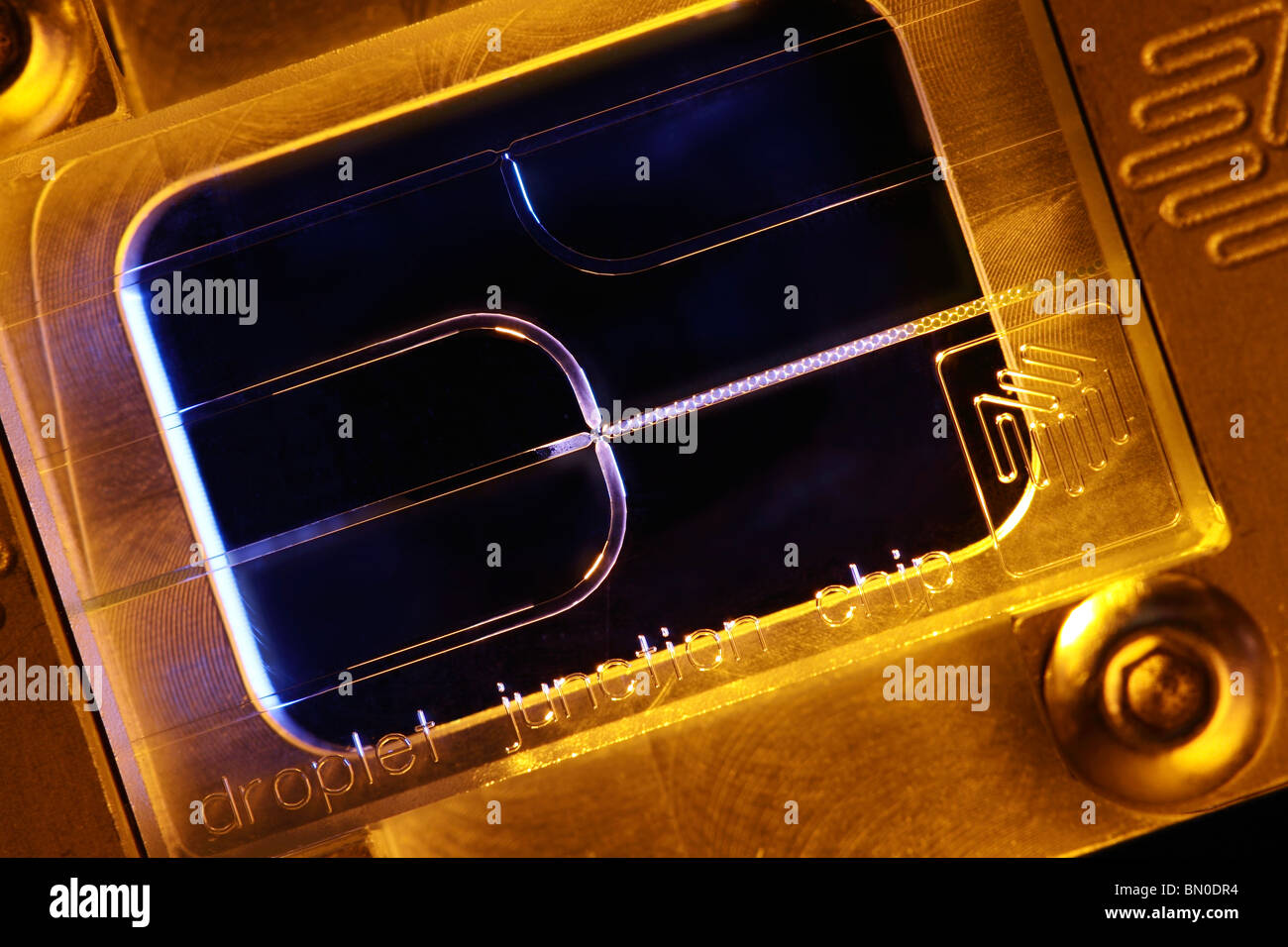 Microfluidic etched glass droplet junction chip for mono dispersed droplet formation in micro and nano technology - Stock Image