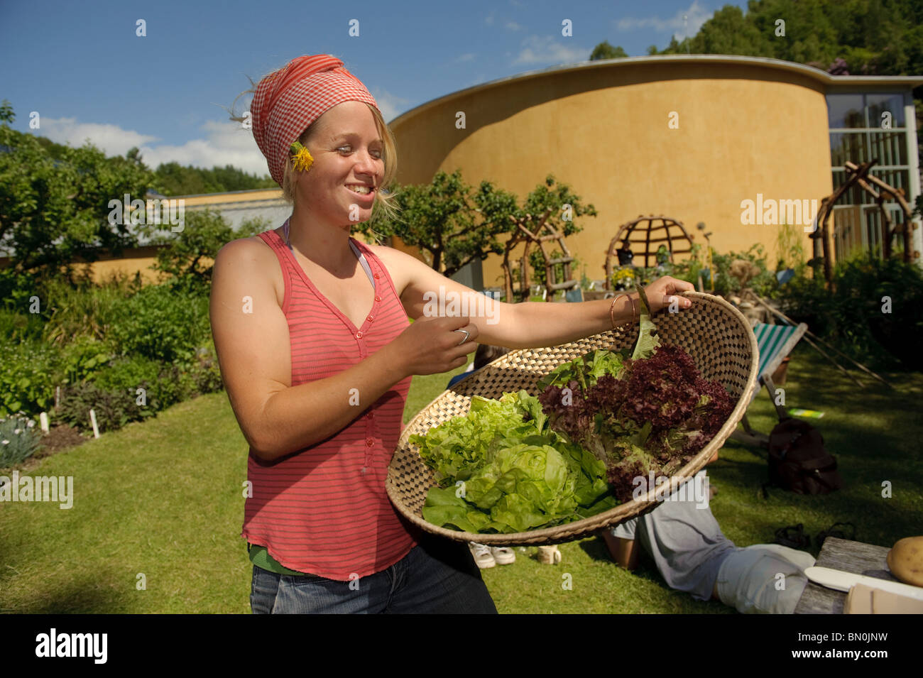 woman holding a basket of freshly picked organic lettuce at The Centre for Alternative Technology, Machynlleth, Stock Photo