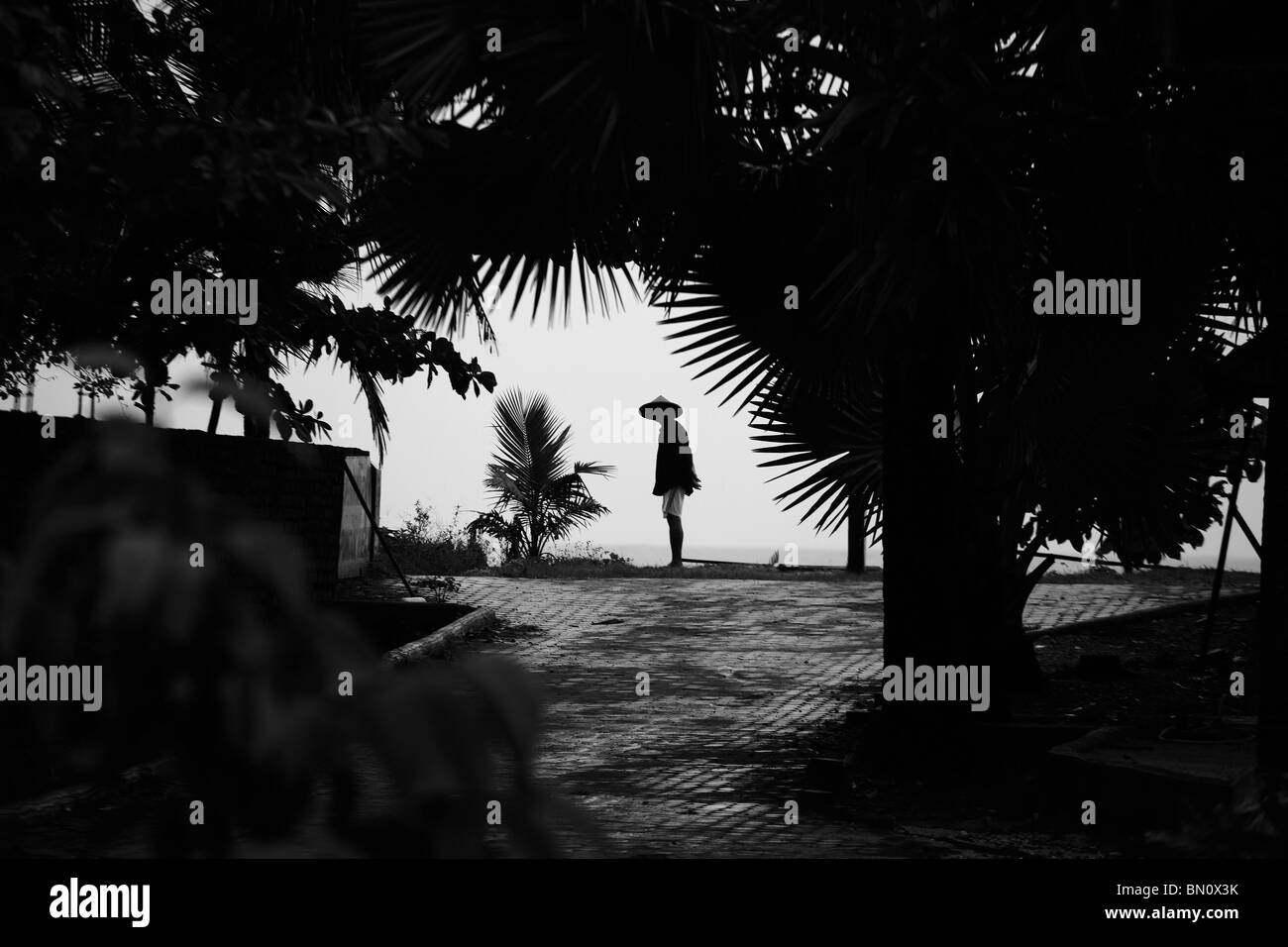 Silhouette of Asian man - Stock Image