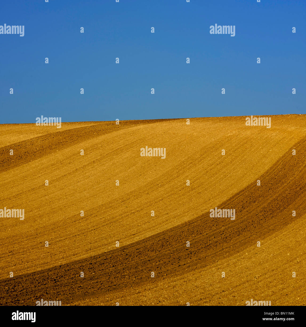 Blue sky and ploughed field with horizon - Stock Image