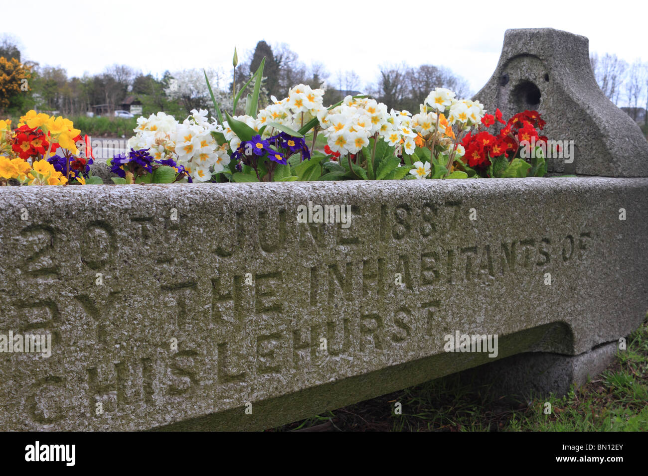 Victorian cattle trough planted with flowers Chislehurst, Kent, - Stock Image