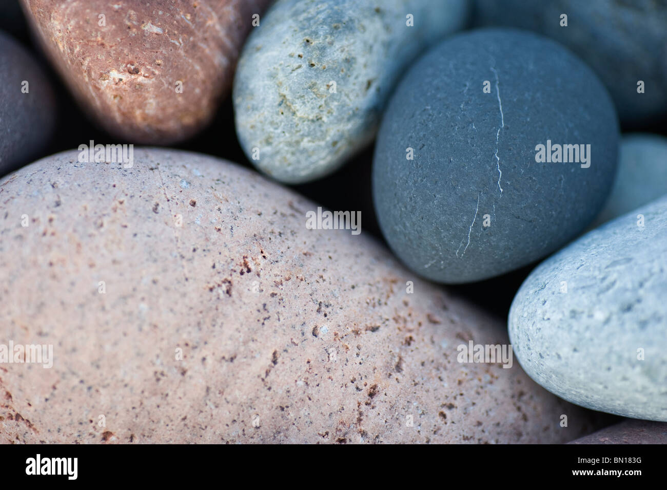 Closeup of pebbles on the beach at Criccieth on the Lleyn Peninsula North Wales Uk - Stock Image