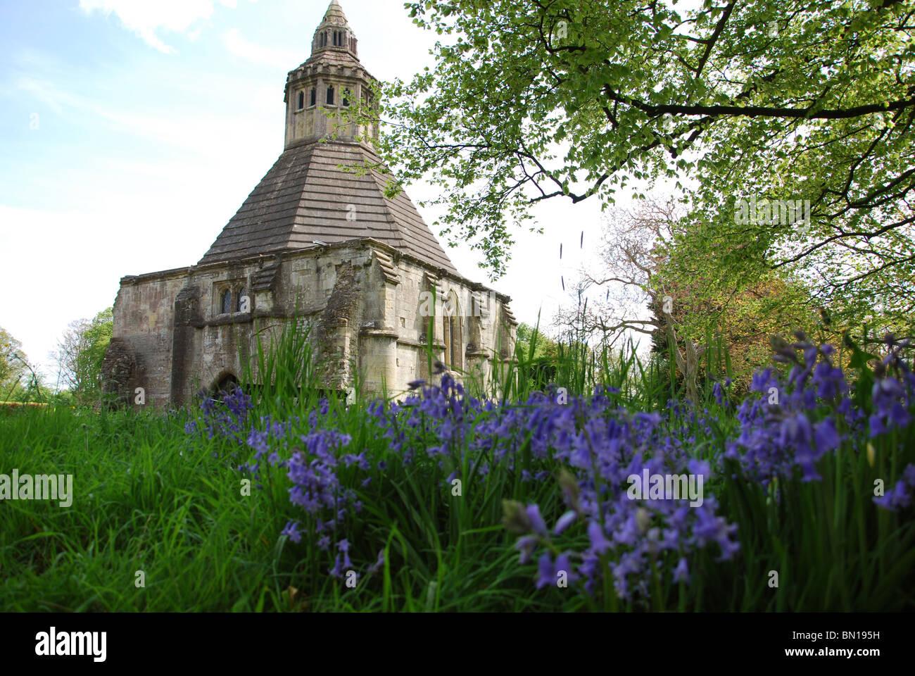 Abbot's Kitchen in spring, Glastonbury Abbey UK Stock Photo