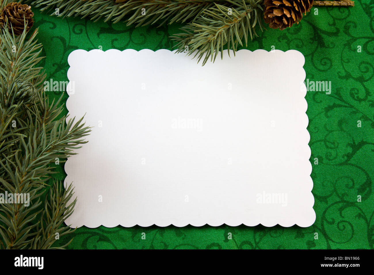 blank Christmas card with fir branches on green scroll background ...