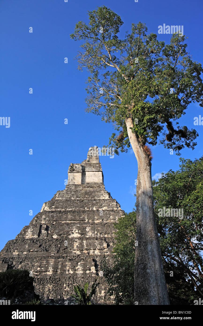 Temple I, Maya ruins of Tikal, near Flores, Guatemala - Stock Image