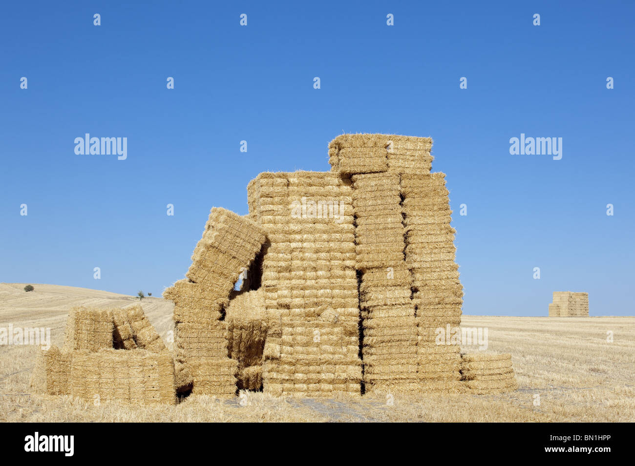 barn with square shape stack on columns cereal texture - Stock Image