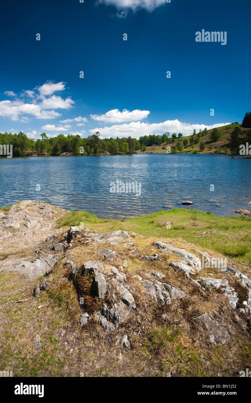 Classic view of Tarn Howes on a summers day in the English Lake District. - Stock Image
