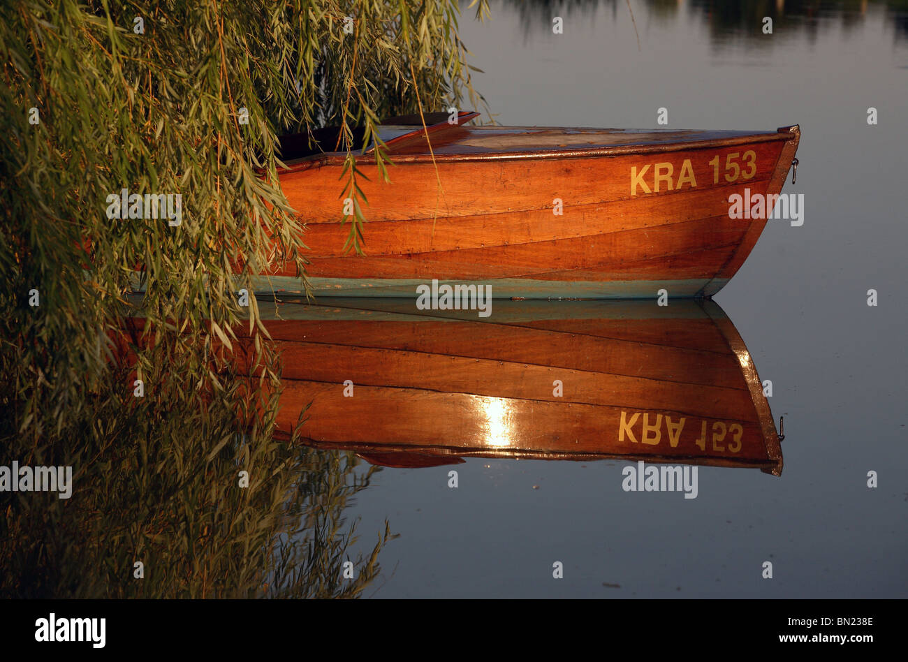 An empty wooden boat under a willow, Prangendorf, Germany Stock Photo