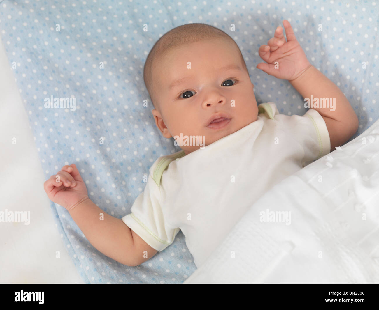 Six week old cute baby boy lying in a crib - Stock Image