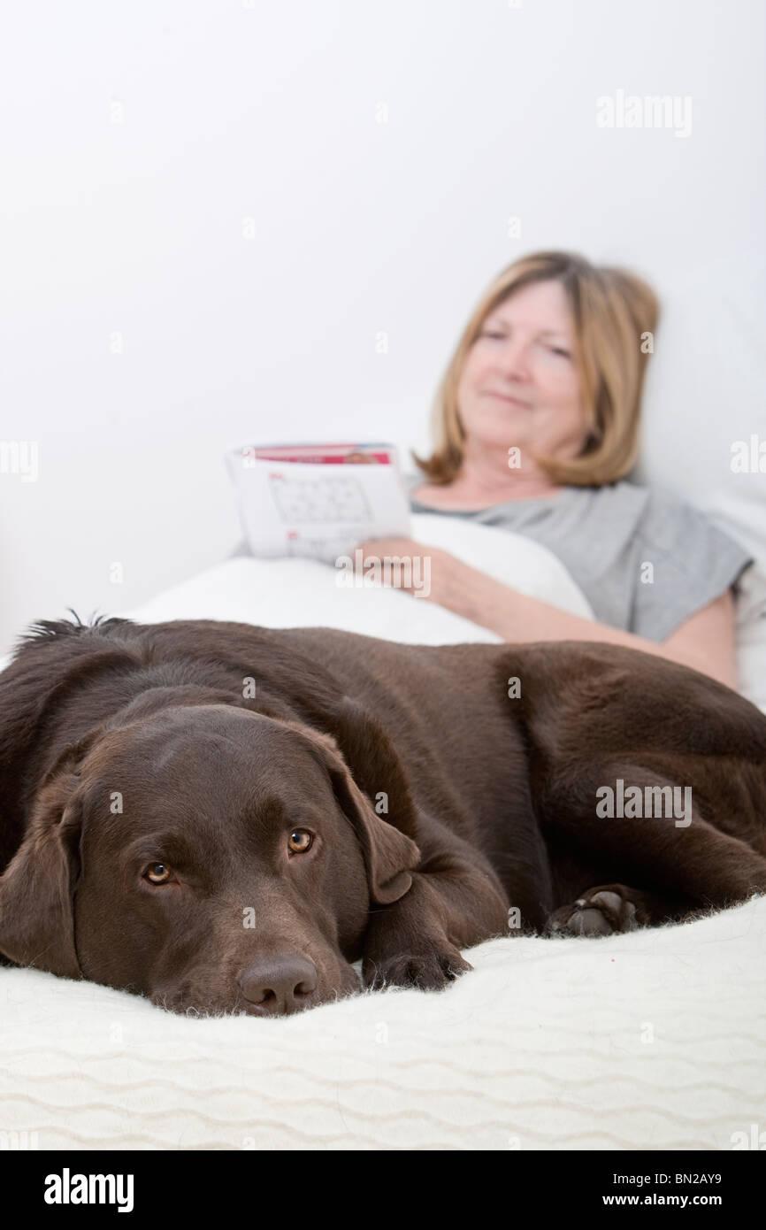 Dog with Senior Lady Owner playing Soduku - Stock Image