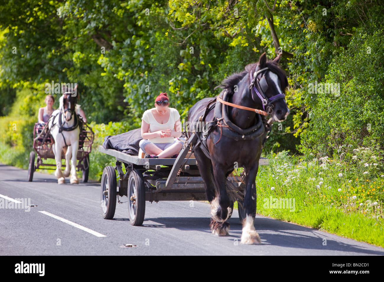 A Gypsy traveling towards the Appleby Horse Fair on a horse and trap, checks her mobile phone near Kirkby Lonsdale, - Stock Image