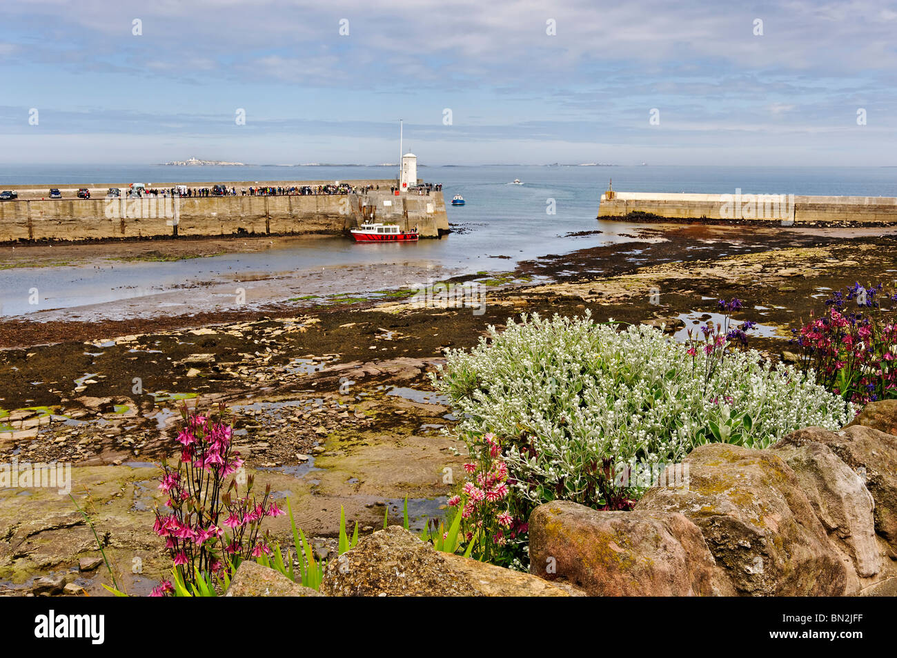 A view of Seahouses harbour in Northumberland - Stock Image