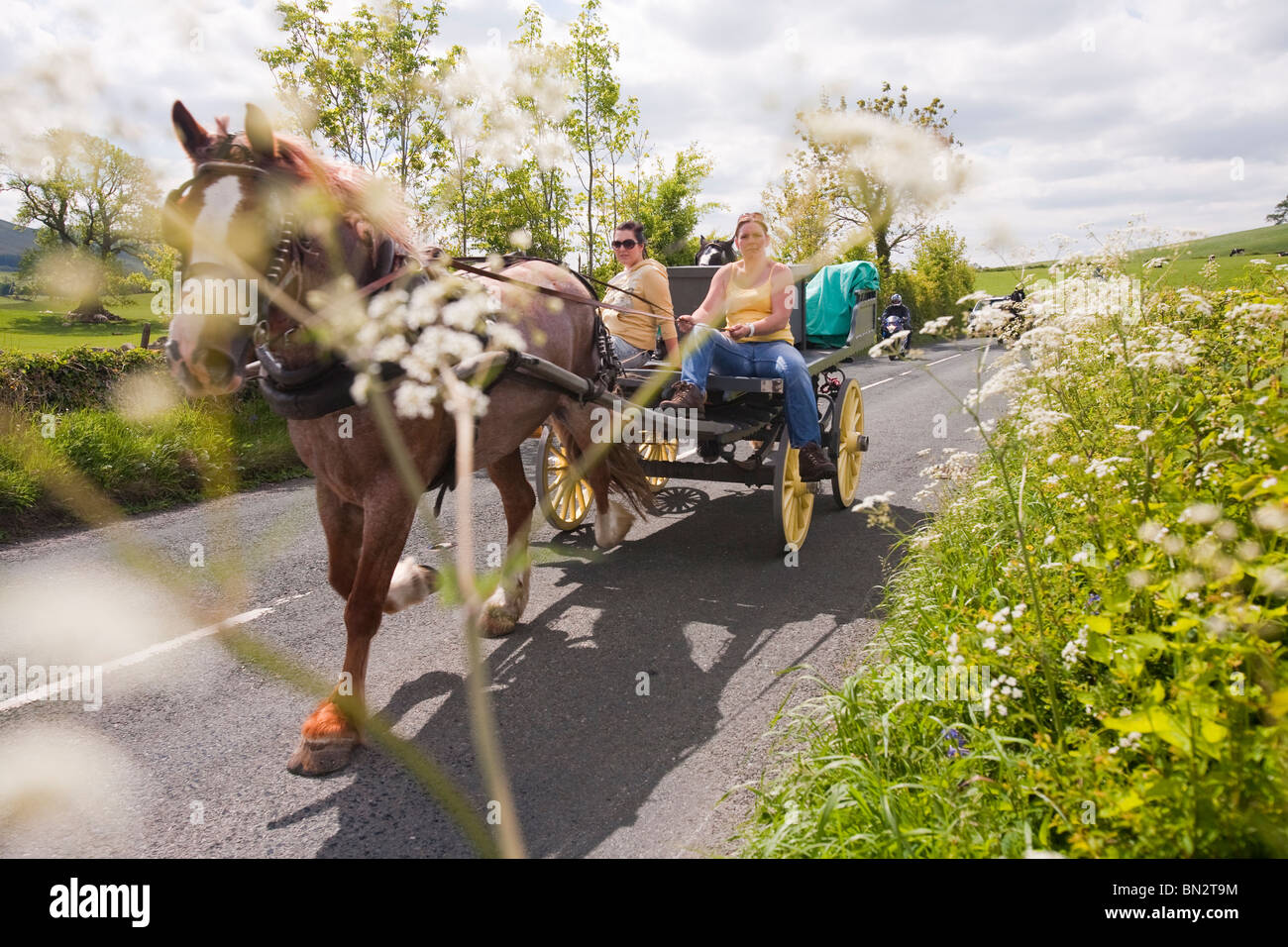Gypsy's traveling towards the Appleby Horse Fair, near Kirkby Lonsdale, Cumbria, UK. - Stock Image