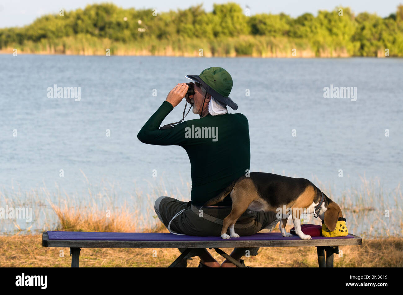 bird watcher observes wildlife at nine mile pond while pet chows