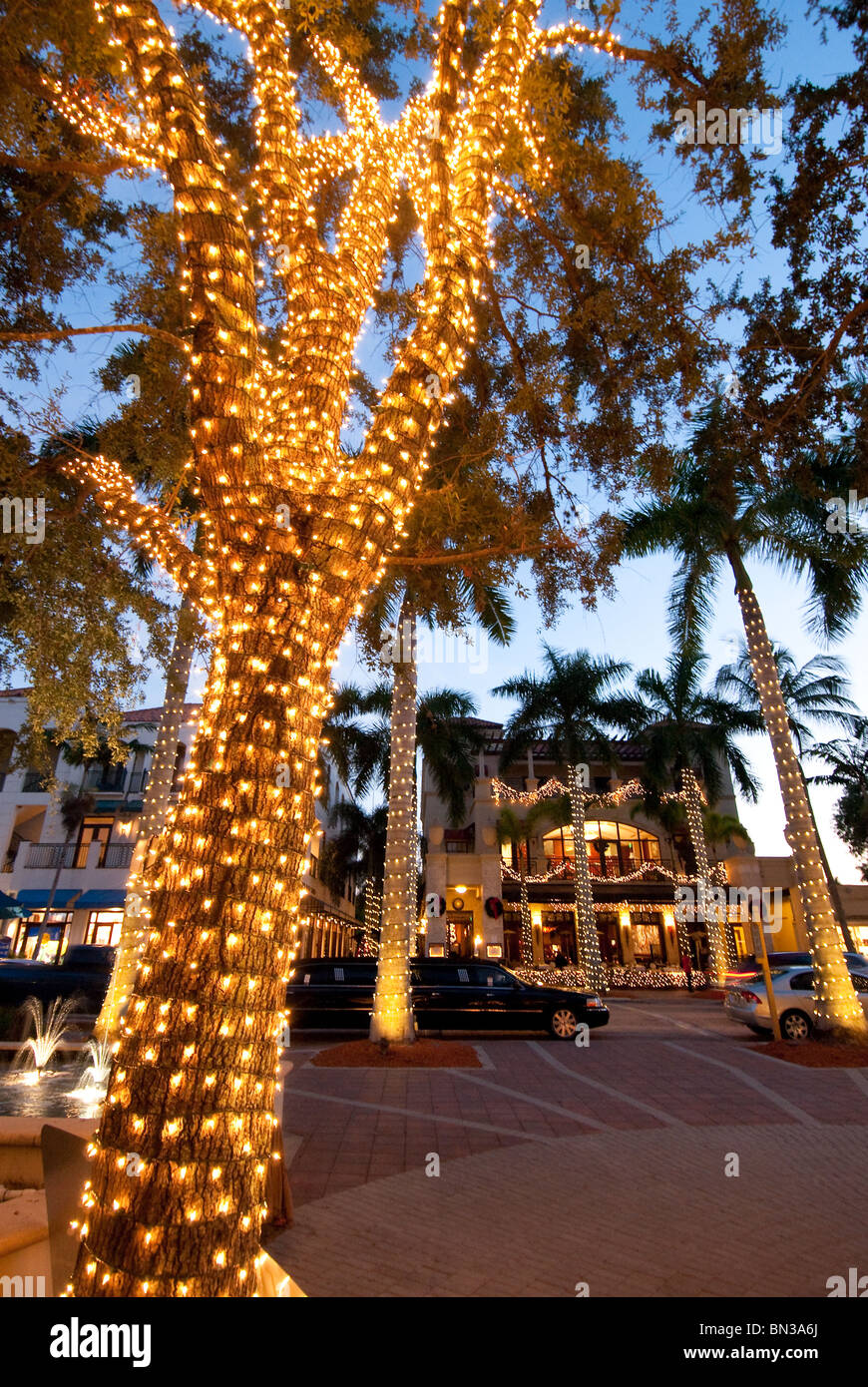 Christmas Decorations In South Florida