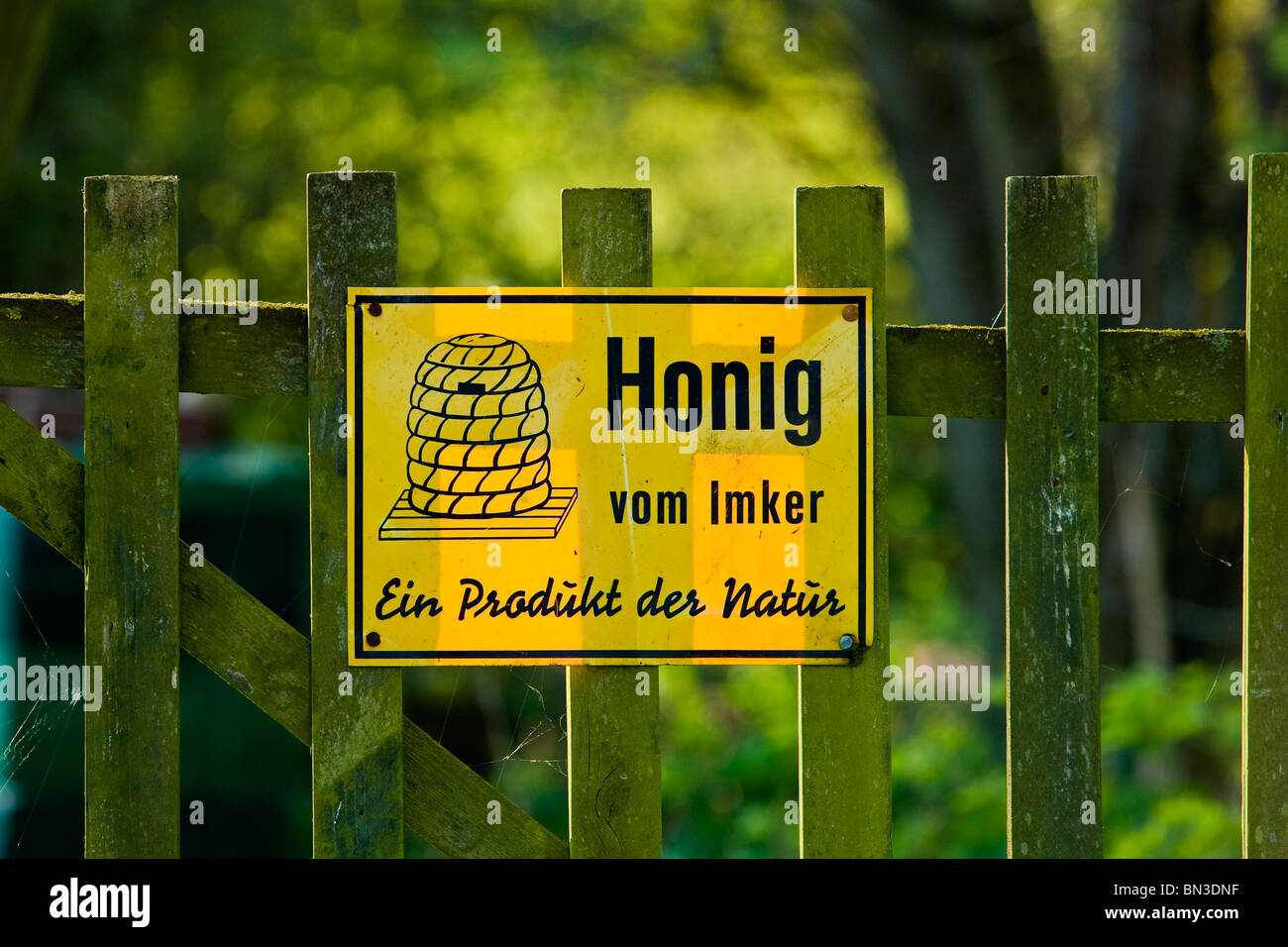 Yellow sign on a wooden fence, close-up - Stock Image